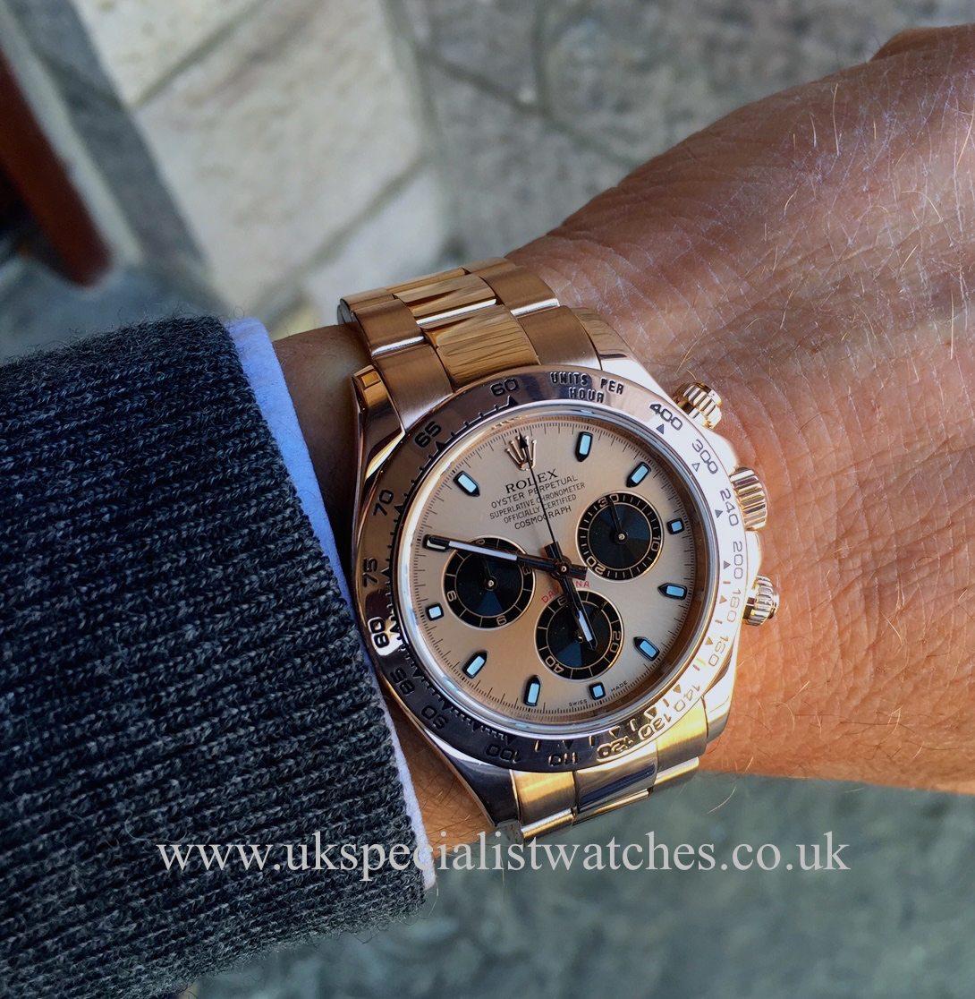 Rolex Daytona Everose Gold Rose Gold Amp Black Dial