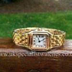 Cartier Panthere Ladies 18ct Solid Gold - W25022B9